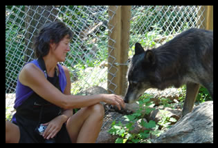 Pati Stajcar Volunteering at The Wolf Sanctuary